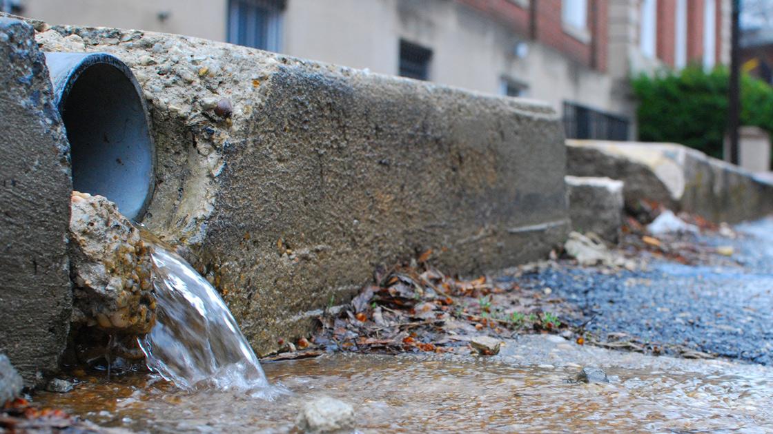 Blocked stormwater drain in eastern suburbs Sydney